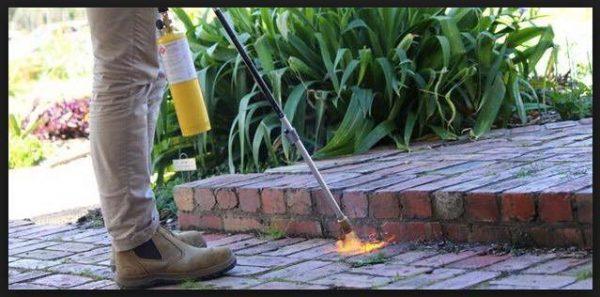 Plinski spaljivač korova